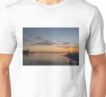 A Long Line of Canada Geese at Sunrise Unisex T-Shirt