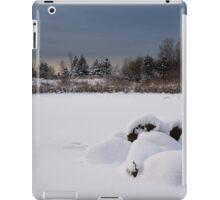 Fluffy Snowdrifts and Ominous, Threatening Skies  iPad Case/Skin