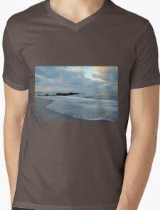 Venice Beach Mens V-Neck T-Shirt