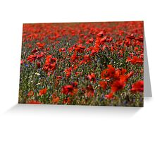 The Poppy Fields Greeting Card