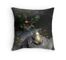 Many coins in the fountain. Throw Pillow