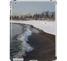 Winter Beach - Lake Ontario, Toronto, Canada iPad Case/Skin
