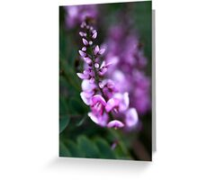 A Misty Pink Greeting Card