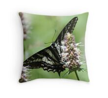 Twin Lakes trail Butterfly Throw Pillow