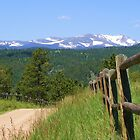Rocky Mountain Fence by Thomas Stevens