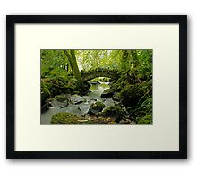 Kilfane Glen  Framed Print