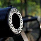 Gettysburg Cannons by Tim Devine