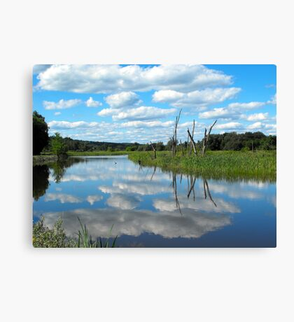 River Road View Canvas Print