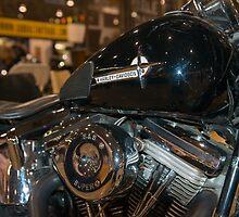 1992 Harley Heritage by Bill Spengler