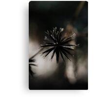 Weed Canvas Print