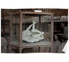 Cavallo Di Pompeii Poster