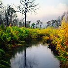 Alabama Gulf State Park by Leroy Dickson