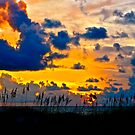 Sunset Over Sarasota by Thomas Fletcher-Wilson