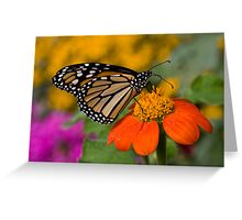 Monarch in the Garden Greeting Card