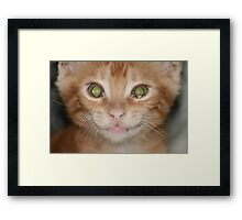 SAY WHAT?! Framed Print