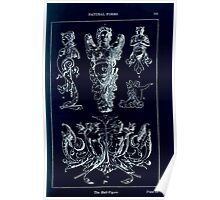 A Handbook Of Ornament With Three Hundred Plates Franz Sales Meyer 1896 0121 Natural Forms Half Figure Inverted Poster