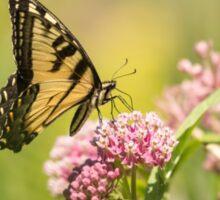 Eastern Tiger Swallowtail 1-2015 Sticker