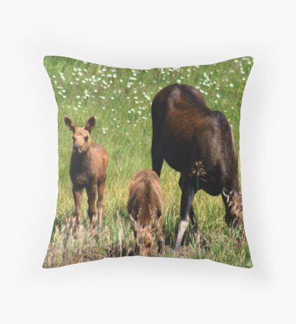 Moose and Two Calves Throw Pillow