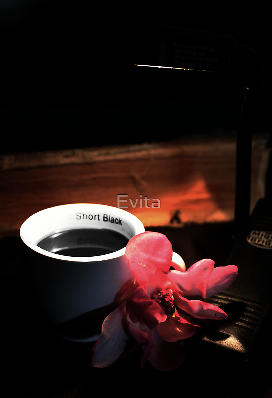 Magnolia and Coffee by Evita