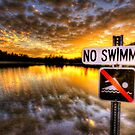 No Swimming by Bob Larson