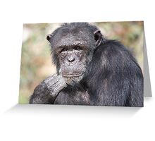 The eyes say it all Greeting Card
