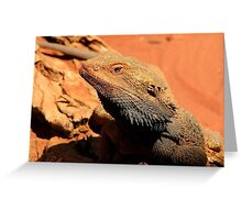 Frill Neck   Greeting Card