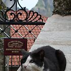 Gate Keeper. Meteora, Greece by SeanD2010