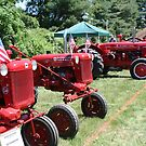Red Tractors by Linda Jackson