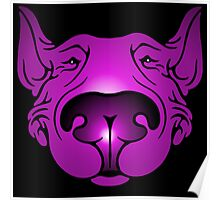 English Bull Terrier Head Graphic Pink and Purple Poster