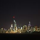 surfers paradise skyline by stewart ross