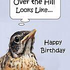 Happy Birthday Card by Brian Dodd