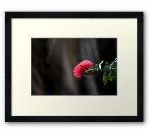 Red Head Framed Print