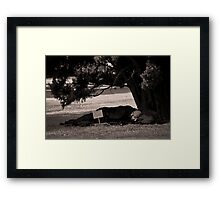 Unfulfilled Political Promise Framed Print