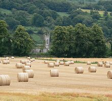 """Harvest Time"" Nr Clonmel,County Tipperary,Ireland. by Pat Duggan"