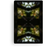Spiders Web Reflection Through Sunlight Owls Eyes Canvas Print
