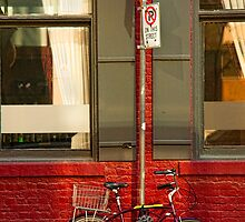 Graf Bobby Bicycle by Marilyn Cornwell