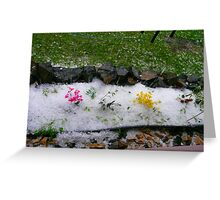 What The....Hail! Greeting Card