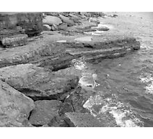 Portland Coastline Photographic Print