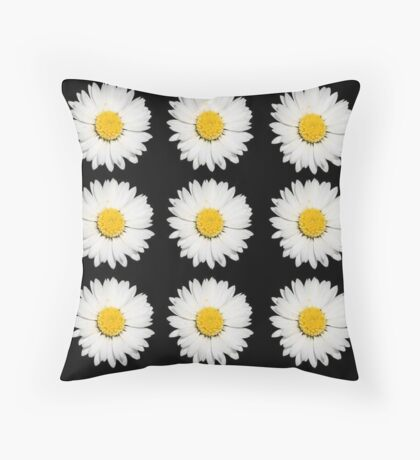 Nine Common Daisies Isolated on A Black Background Throw Pillow