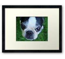 """Hi, Mom"" Framed Print"
