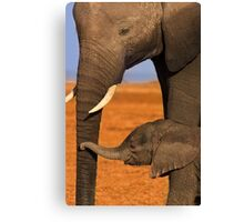 Elephant Mother and Calf, Amboseli National Park, Kenya. Africa. Canvas Print