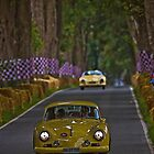 Yellow cars by Uwe Rothuysen