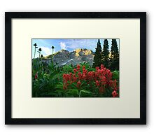 Devil's Castle Wildflowers Framed Print