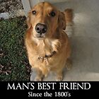 Man's Best Friend - The Golden Retriever by elishamarie28