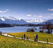 Alpine Spring by Kasia-D