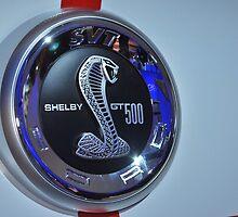 Shelby Cobra by JimSanders