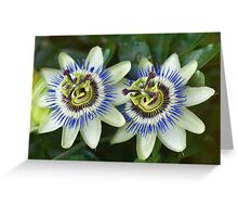 Passion flower twins Greeting Card