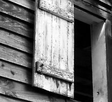Window from the 1700's by Tammi Rollins