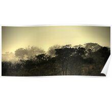 Kruger Park sunrise Poster