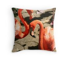 Pink Flamingos Throw Pillow